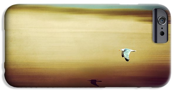 Sea Birds iPhone Cases - Flight Over The Beach iPhone Case by Hannes Cmarits