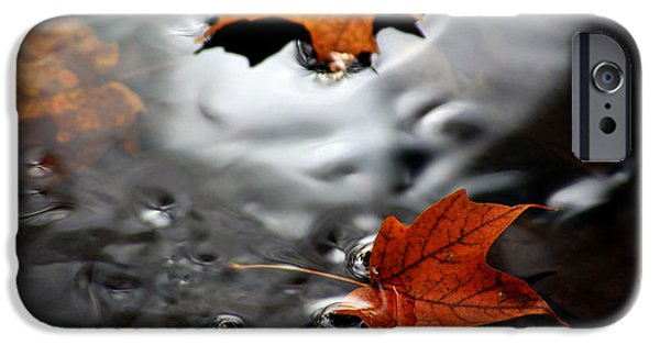 Nature Center Pond iPhone Cases - Floating Maple Leaves iPhone Case by LeeAnn McLaneGoetz McLaneGoetzStudioLLCcom