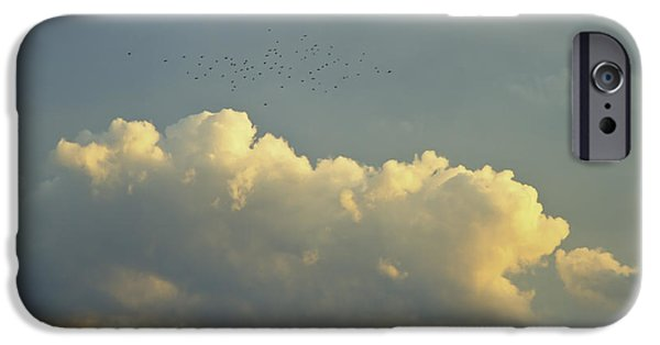 Drama iPhone Cases - Flock of Bird Near Clouds At Sunset Fine Art Print iPhone Case by Keith Webber Jr