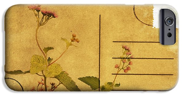 Torn iPhone Cases - Floral Pattern On Postcard iPhone Case by Setsiri Silapasuwanchai