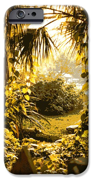 Palm Tree Greeting Cards iPhone Cases - Florida Dream iPhone Case by Carol Groenen