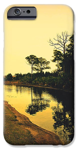 River View iPhone Cases - Florida Landscape II iPhone Case by Susanne Van Hulst