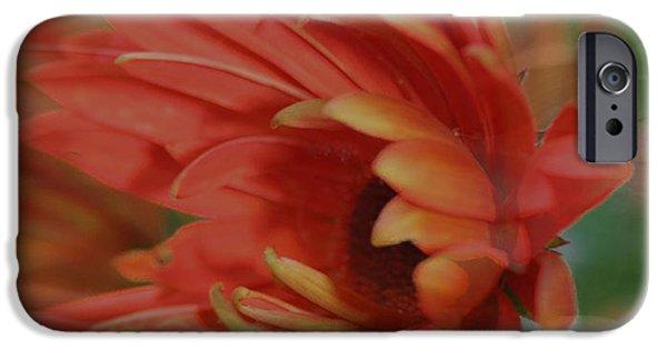 Flower Design Photographs iPhone Cases - Flower dreams iPhone Case by Linda Sannuti