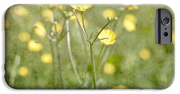 Floral Photographs iPhone Cases - Flower of a buttercup in a sea of yellow flowers iPhone Case by Joana Kruse