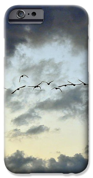 Flying South for the Winter iPhone Case by Paul Ward