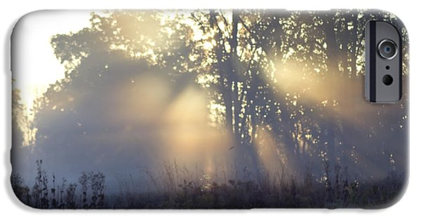 Fog Mist iPhone Cases - Fog Rays in a Meadow iPhone Case by Sven Brogren