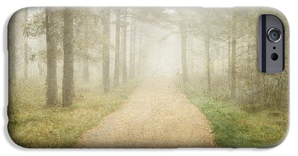 Fog Mist iPhone Cases - Foggy Forest iPhone Case by Sonya Kanelstrand
