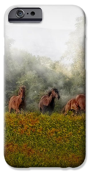 Foggy Morning iPhone Case by Susan Candelario
