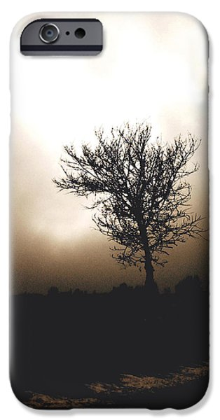 Nature Scene iPhone Cases - Foggy Winter Morning iPhone Case by Ann Powell