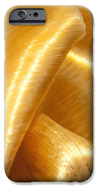 Folding Gold iPhone Case by Artist and Photographer Laura Wrede