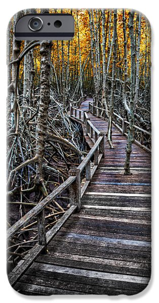 Board Digital Art iPhone Cases - Footpath in mangrove forest iPhone Case by Adrian Evans
