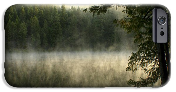 Fog Mist iPhone Cases - Forest and Fog iPhone Case by Idaho Scenic Images Linda Lantzy