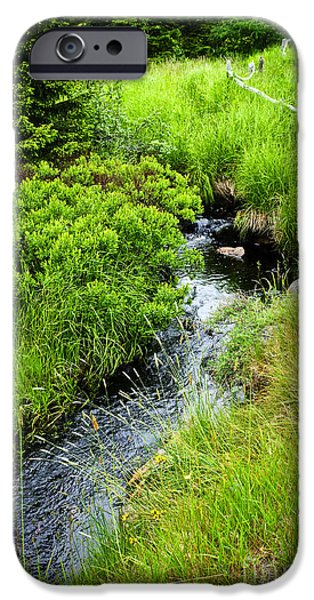 Creek iPhone Cases - Forest creek in Newfoundland iPhone Case by Elena Elisseeva