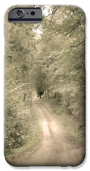Afraid iPhone Cases - Forest Path iPhone Case by Svetlana Sewell