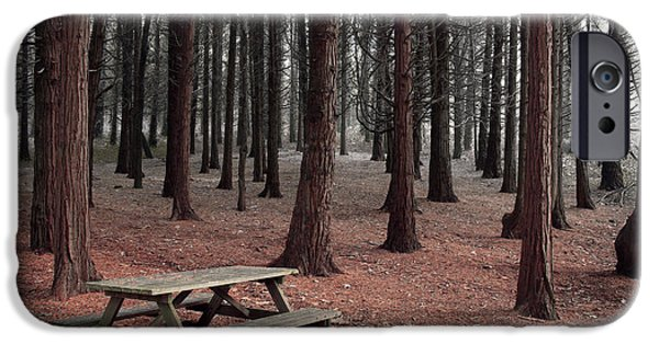 Prospects iPhone Cases - Forest Table iPhone Case by Carlos Caetano