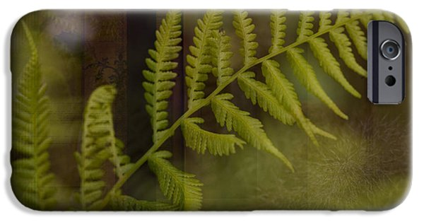 Photo Collage iPhone Cases - Forest Treasures iPhone Case by Bonnie Bruno