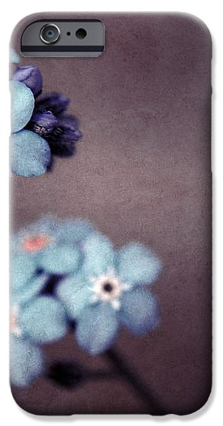 Forget Me Not 01 - s05dt01 iPhone Case by Variance Collections