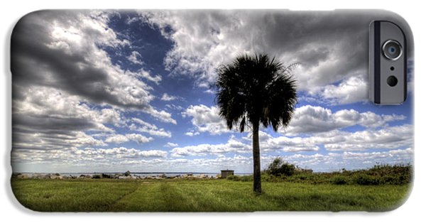 Palm Tree Greeting Cards iPhone Cases - Fort Moultrie Palm  iPhone Case by Dustin K Ryan