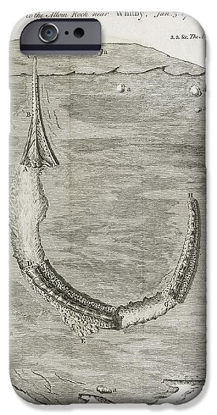Caption iPhone Cases - Fossil Animal, 18th Century iPhone Case by Middle Temple Library