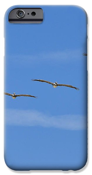 Four Flyers iPhone Case by Al Powell Photography USA