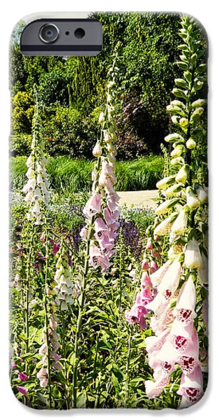 Foxglove Flowers Photographs iPhone Cases - Foxgloves iPhone Case by Sharon Lisa Clarke