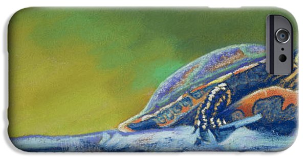 Stripes Pastels iPhone Cases - Franks Turtle iPhone Case by Tracy L Teeter