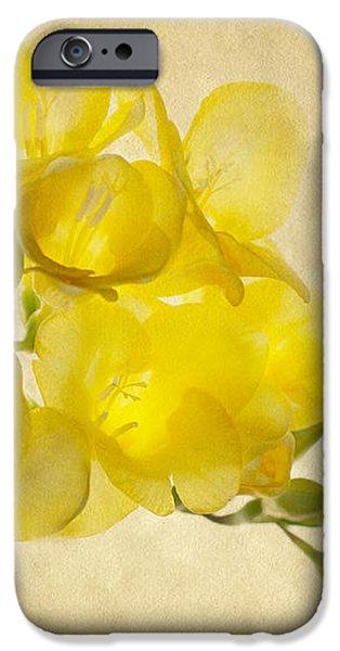 Freezia Bouquet 2 iPhone Case by Rebecca Cozart