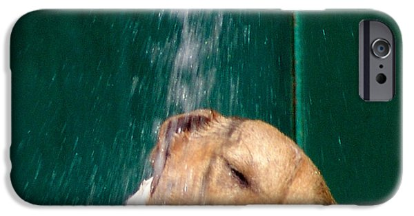 Cute Puppy iPhone Cases - Fresh iPhone Case by Alessandro Della Pietra