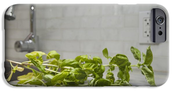 Electrical Equipment Photographs iPhone Cases - Fresh Basil Herb Leaves From The Garden iPhone Case by Marlene Ford
