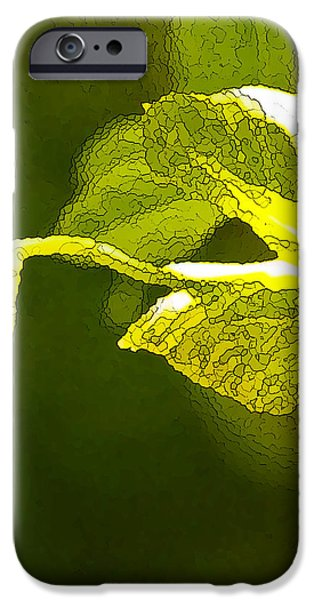 Fresh Peas iPhone Case by Artist and Photographer Laura Wrede
