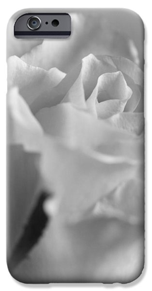 Beauty Mark iPhone Cases - Friendship Rose in Black and White iPhone Case by Mark J Seefeldt