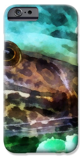 Frog Ready To Be Kissed iPhone Case by Susan Savad
