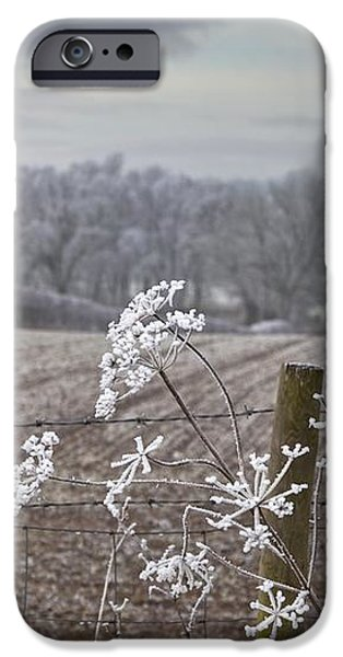 Frost-covered Rural Field Cumbria iPhone Case by John Short