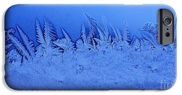 Frigid iPhone Cases - Frost Forest iPhone Case by Thomas R Fletcher