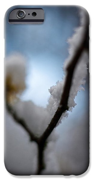 Frost Photographs iPhone Cases - Frost Light iPhone Case by Mike Reid