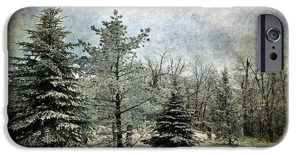 Snowy Day Digital Art iPhone Cases - Frosty iPhone Case by Lois Bryan