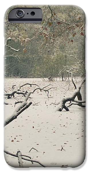 Frozen Fallen Wide iPhone Case by Andy Smy