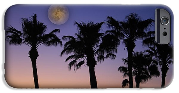 Palm Tree Greeting Cards iPhone Cases - Full Moon Palm Tree Sunset iPhone Case by James BO  Insogna