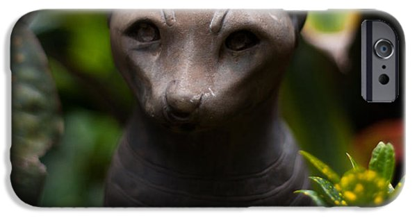 Big Island iPhone Cases - Garden Cat iPhone Case by Mike Reid