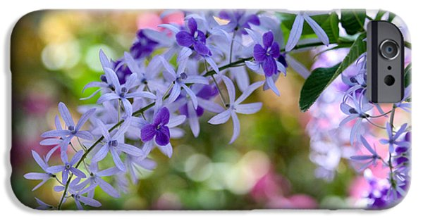 Florida Flowers Photographs iPhone Cases - Garden Full of Colors iPhone Case by Sabrina L Ryan