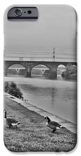 Geese Along the Schuylkill River iPhone Case by Bill Cannon