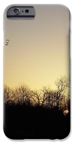 Geese at Sunrise iPhone Case by Kent Lorentzen