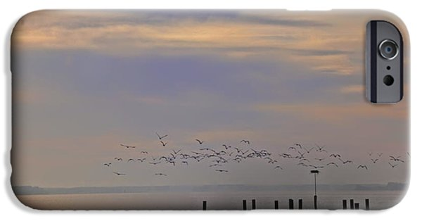 Chesapeake iPhone Cases - Geese Over the Chesapeake iPhone Case by Bill Cannon