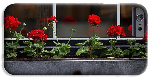 Red Geraniums iPhone Cases - Geranium Flower Box iPhone Case by Doug Sturgess