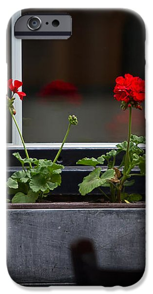 Geranium Flower Box iPhone Case by Doug Sturgess
