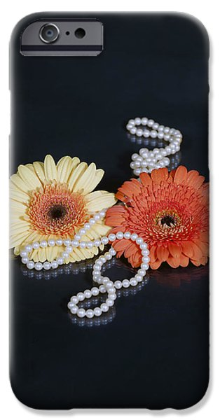 gerberas with pearls iPhone Case by Joana Kruse
