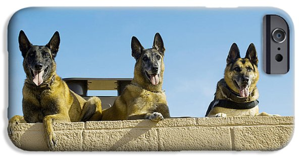 Best Sellers -  - Ledge iPhone Cases - German Shephard Military Working Dogs iPhone Case by Stocktrek Images
