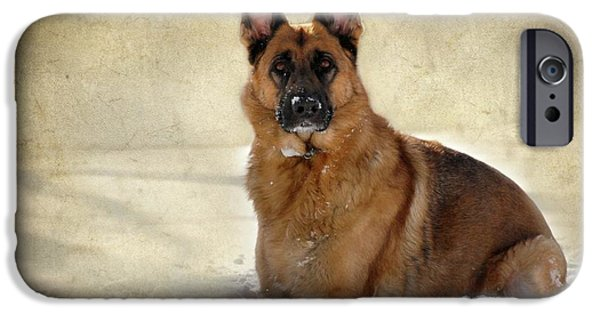 Canines Digital Art iPhone Cases - German Shepherd Dog In Winter - Textured iPhone Case by Angie Tirado