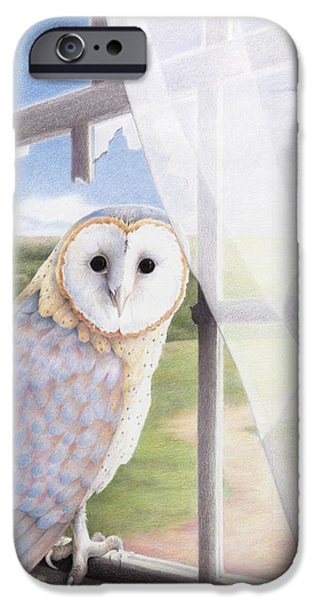 Barn Owl iPhone Cases - Ghost In The Attic iPhone Case by Amy S Turner