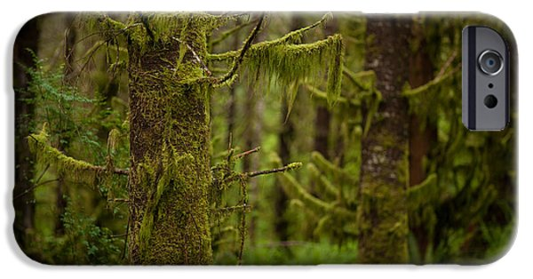 Forest iPhone Cases - Ghosts Amongst iPhone Case by Mike Reid